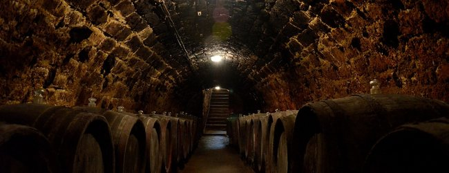 Wine of Hungary | Magyar Bor