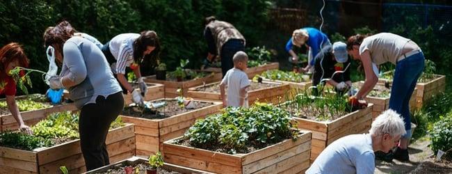Mapa komunitních zahrad a kompostérů